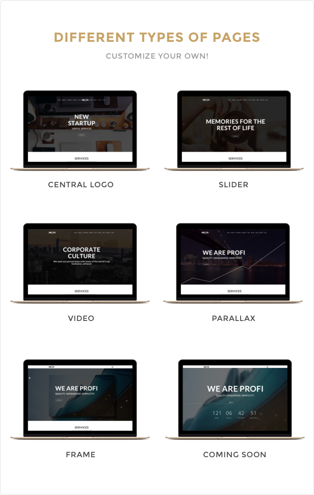Profi WP Different types of pages